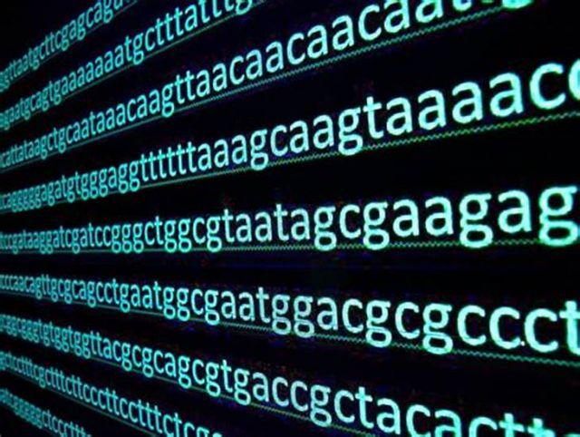 Gene Decode Latest Updates June 2021
