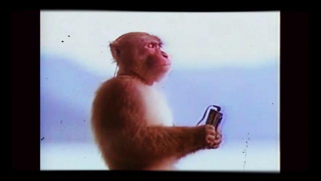 New Monkey Werx: Wars & Rumors - 3.3.21 - Biblical News from Around the World
